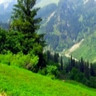 Customized Tour Packages to Himachal Pradesh