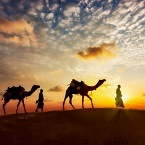 Customized Tour Packages to jaisalmer
